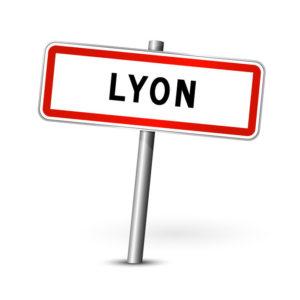 déménagement Lyon